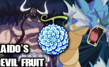 frouto-tou-kaido-one-piece-psaria-koi-anime-manga-oda-animagiagr